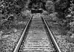 railway tracks migration path